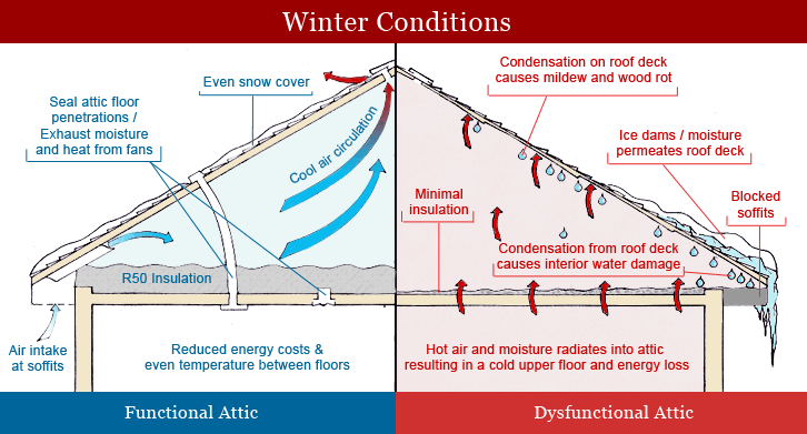 Attic insulation diagram positives ventilation for How to find a good builder in your area