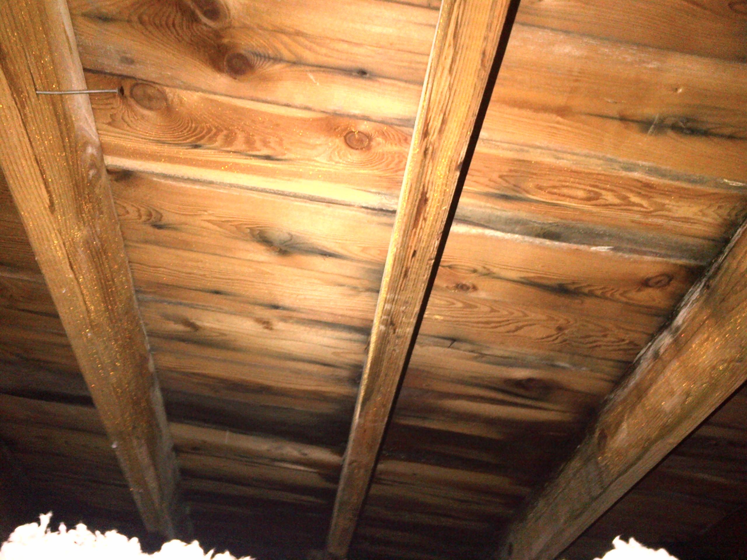 Wet Attic Roof Causes Roof Leak Poor Ventilation Moisture